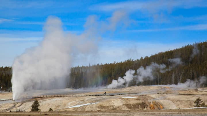 The Beehive Geyser Erupts In The Upper Geyser Basin In Yellowstone National Park