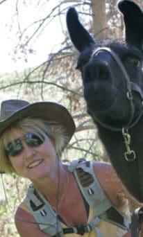 Susi Sinay Is A Professional Naturalist Guide With Yellowstone Safari Company In Bozeman, MT.