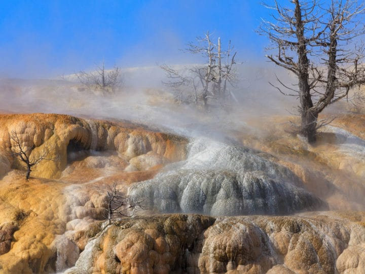 Travertine Terraces Are Found At Mammoth Hot Springs In Yellowstone National Park