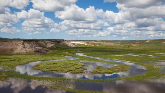 Spring Rains and Meltwater Temporarily Flood a Creek In Yellowstone National Park's Hayden Valley