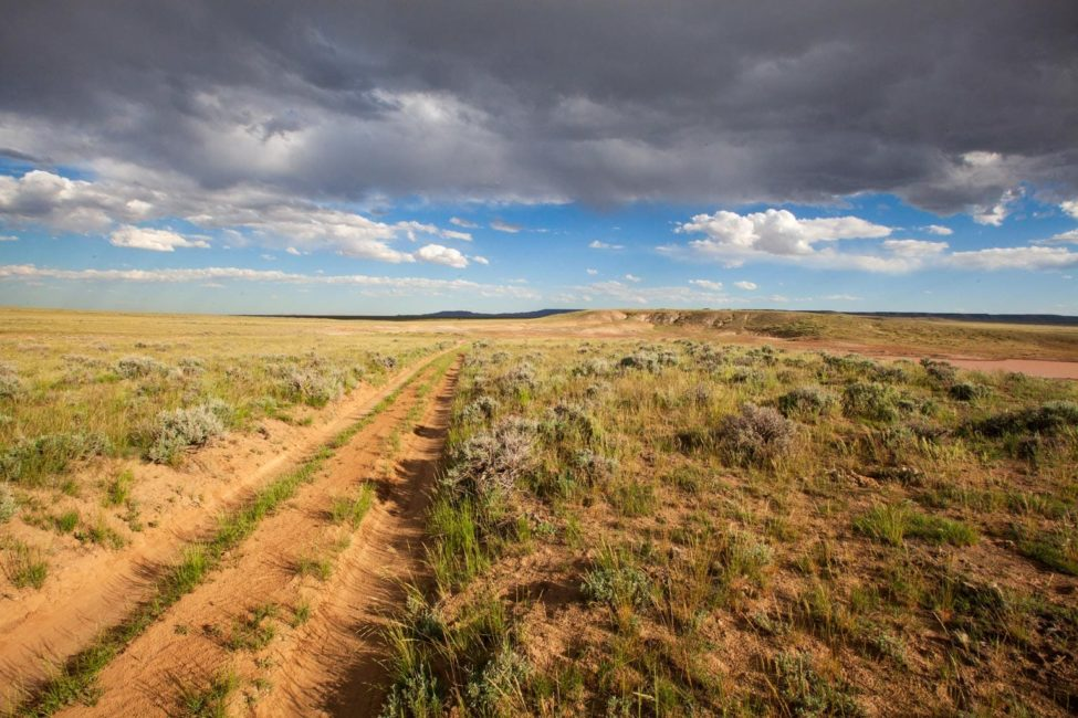 A Simple Dirt Track Cuts Through The Vast Open Landscape Of The McCullough Peaks Wildlife Management Area