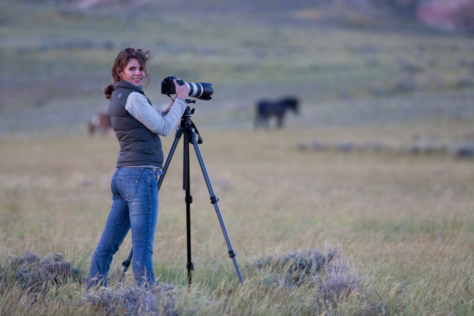 A Photographer In The Field Captures Wild Horses Roaming The McCullough Peaks Wildlife Management Area