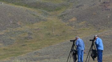 Two Men On A Wildlife Safari Stand On A Rocky Hillside While Looking Through Spotting Scopes In Yellowstone National Park