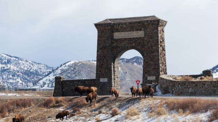 The Roosevelt Arch Stands At The North Entrance Of Yellowstone National Park